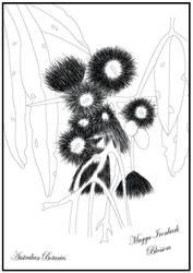Muggan Ironbark Blossom P.2