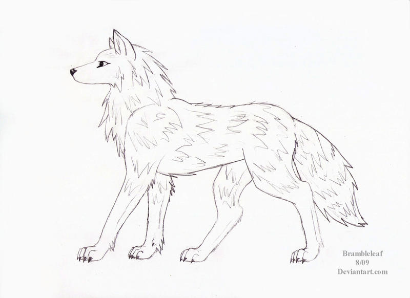 Wolf side view drawing - photo#1