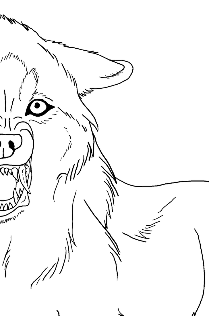 How To Draw A Wolf Face Growling  Photo#27