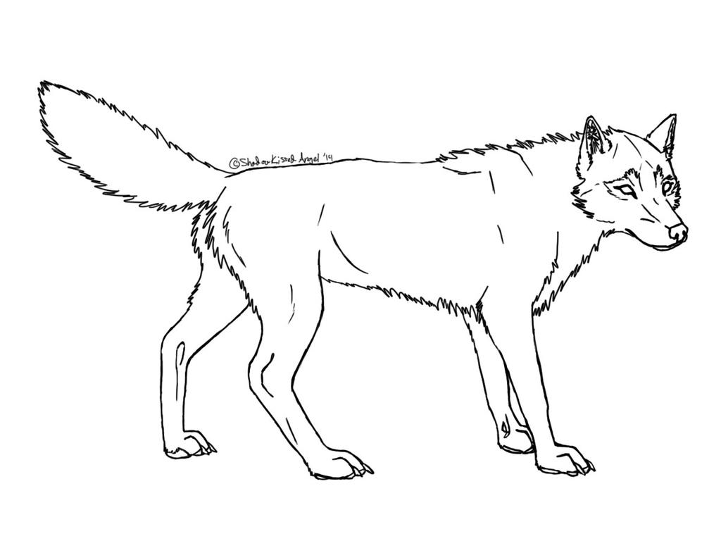 D Line Drawings : Realistic wolf coloring pages pictures to pin on pinterest