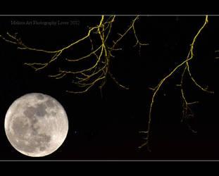 Moon by MelissaPhotos