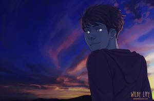 Wilde Life - Sunset by Lepas