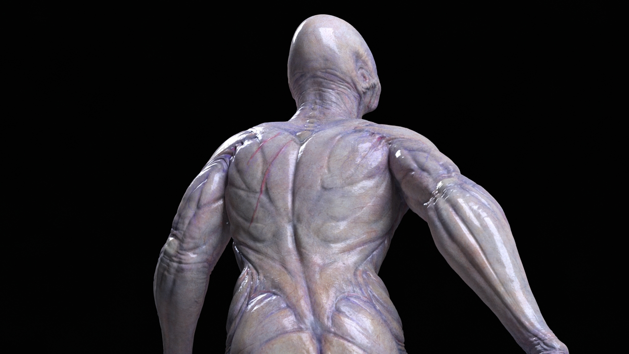 alien back view close up by strajky