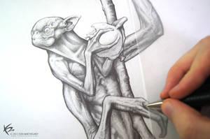 Pencil Drawing by KENBARTHELMEY