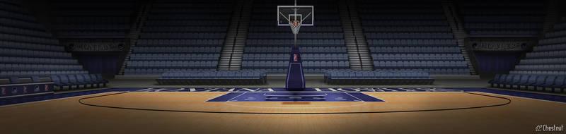 FBA Basketball Court by FriendlyChestnut