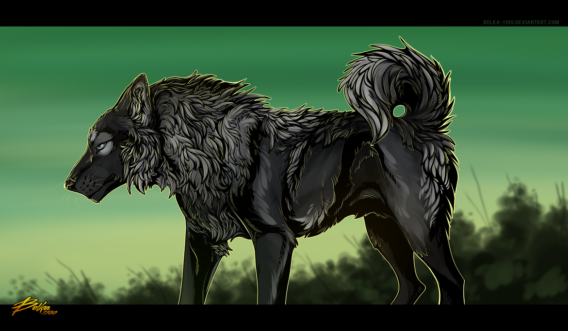 Wolfy - Commission by Belka-1100