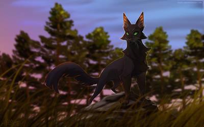 Shadowstar - First leader of ShadowClan by Belka-1100