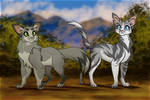Dovewing and Ivypool