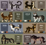 Cat Adoptables - [Auction] - 5/8 open by Belka-1100
