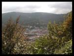 Heidelberg 03