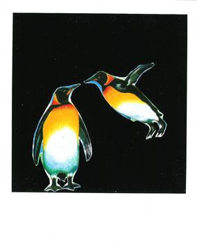 donde suenan los pinguinos