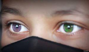 incredible eyes
