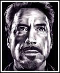 Robert Downey Jr ~ Tony Stark