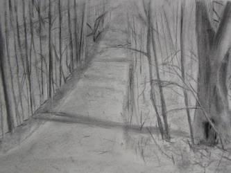 forest path by Jeremy-Burner
