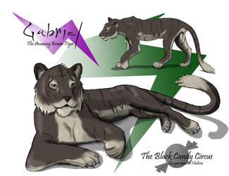 Gabriel the brown Tiger by Jeremy-Burner