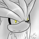 Silver the hedgehog.