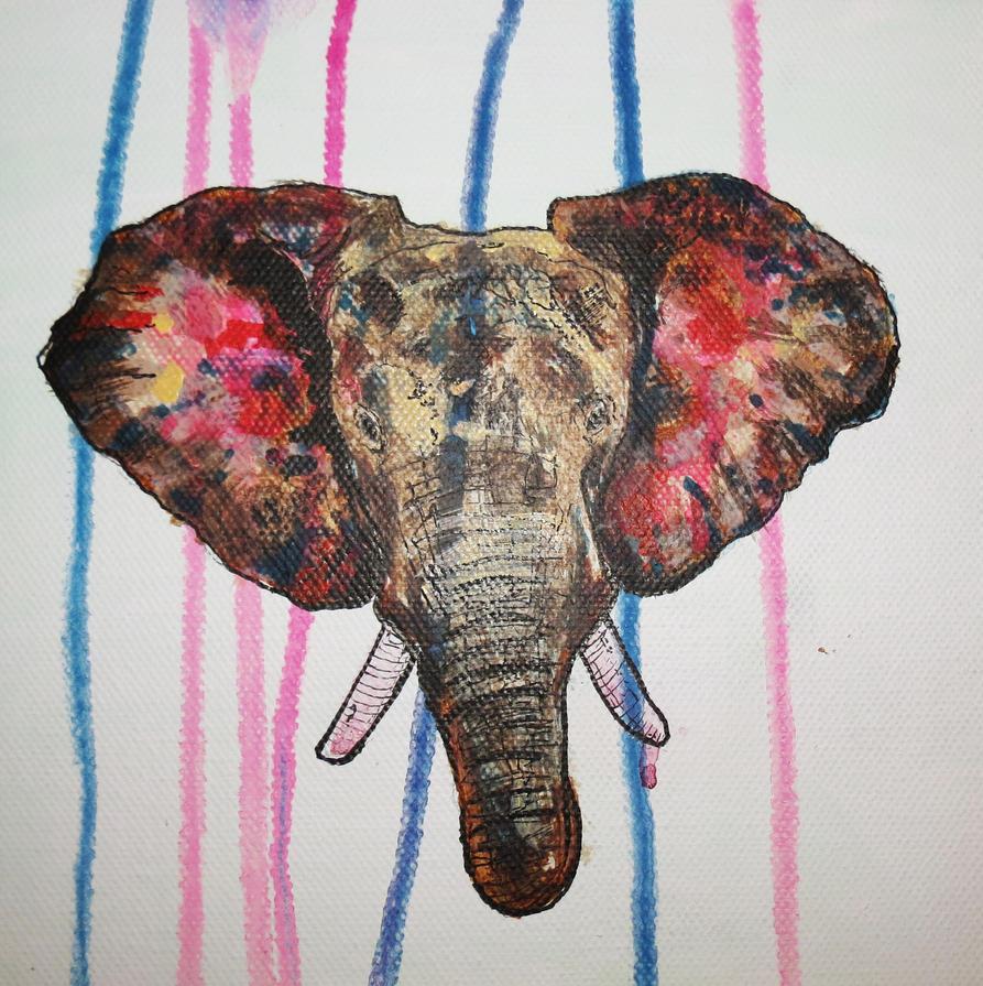 Elephant by OSTB