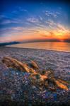 Morbid Sun Hails The Dead One by ciyzis-kirayzs