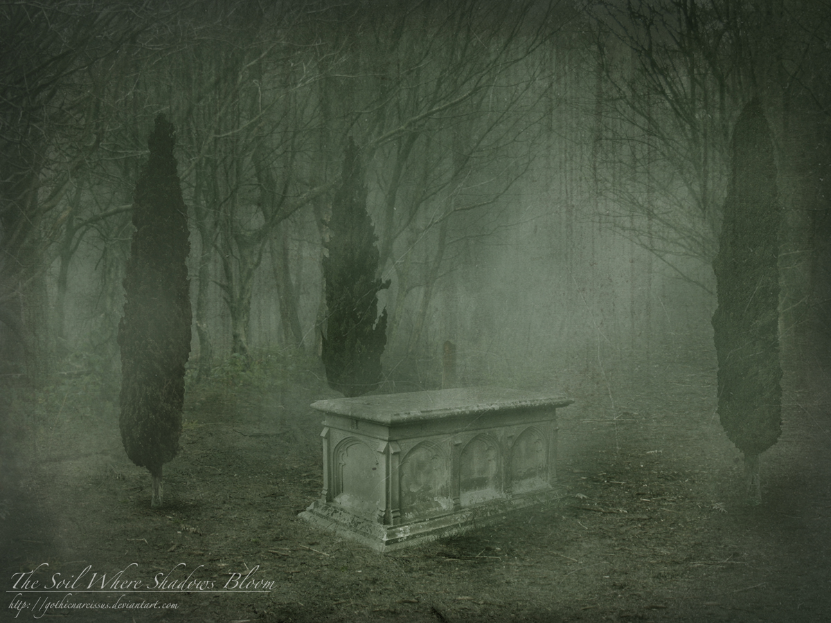 The Soil Where Shadows Bloom by *GothicNarcissus