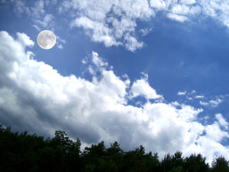 Moonlight by Hikari566