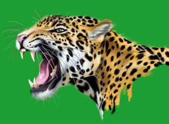 Jaguar freehand by BornCrazy7189