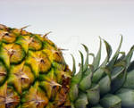 Pineapple. by Akatears