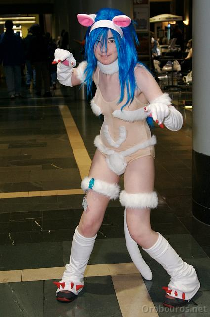 Cosplay And Furries Porn Pic 77