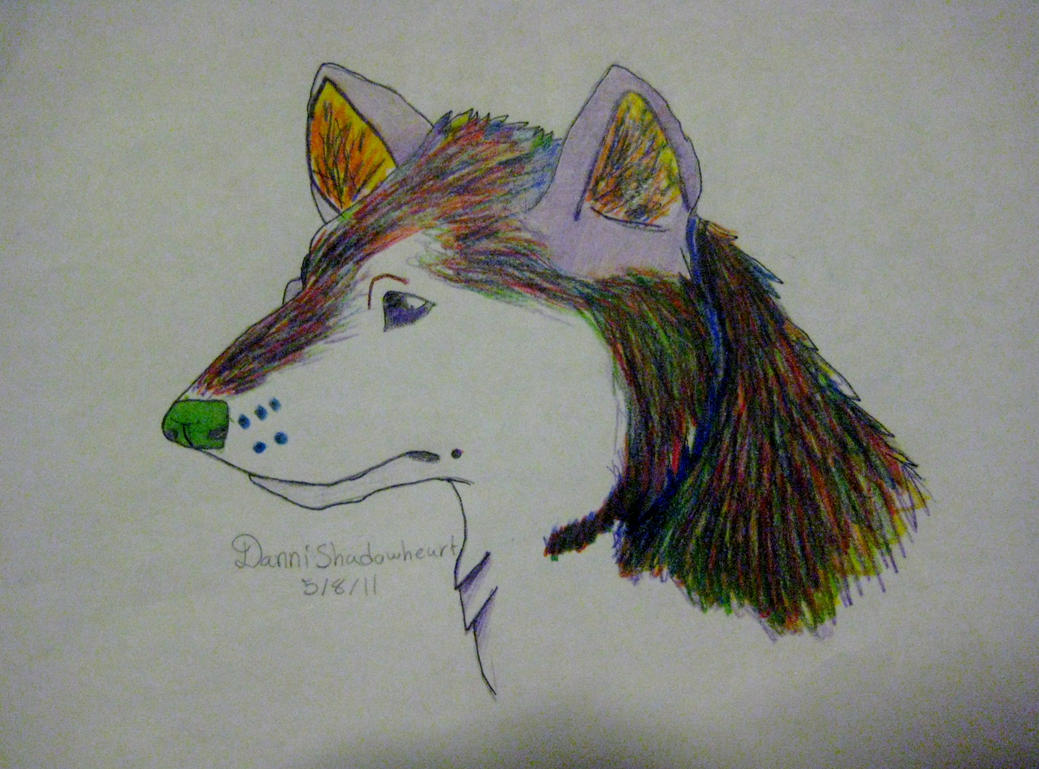 Rainbow wolf by DanniShadowheart