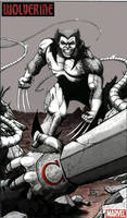 WOLVERINE vs. OMEGA RED