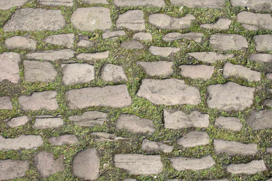 SMD Free Texture 10: Mossy Stone Path by Spicy-Monster on