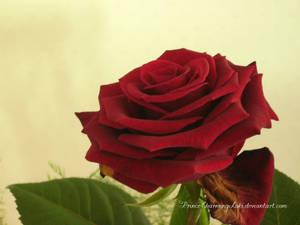 ::For my love: by PrinceCharmingLoki