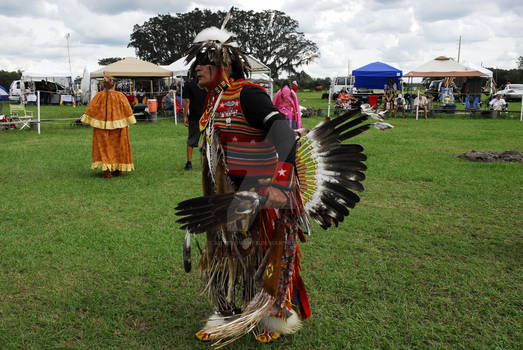 American Indian Pow Wow - OvahFxDigitalRealm
