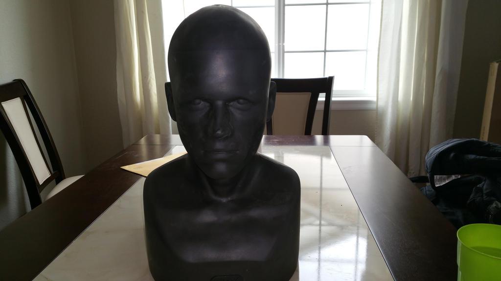 Head Display by Zombietox