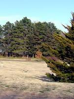 Centennial Park by KelHemp