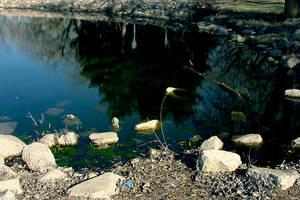 Green Reflections by KelHemp