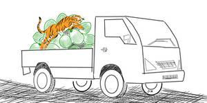 Chola tiger in van