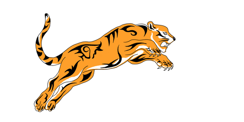 Tiger Chola logo
