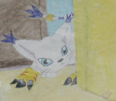 Gatomon Ready to Pounce