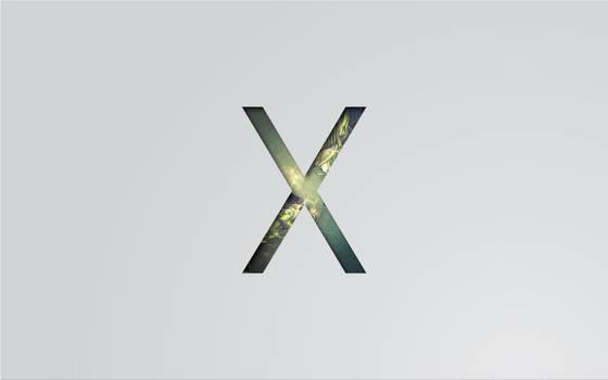 x wall