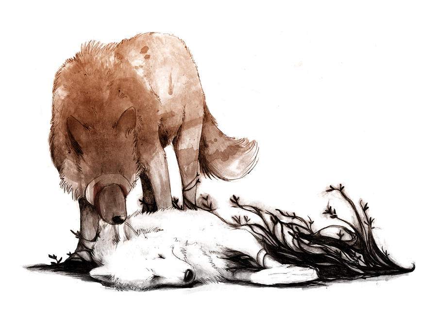how to draw a wolf sleeping