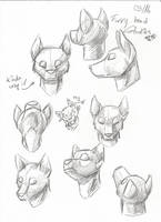 Furry Anatomy Sketches Head by thedalmatiangirl