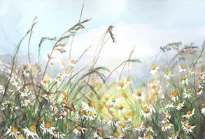 Through Summer Meadows by ShanghaiSarah