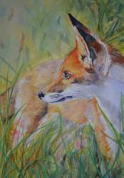 Fox by ShanghaiSarah