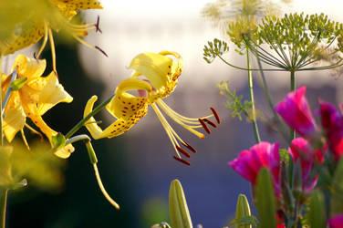 Flowers2 by doyoulikewaffels