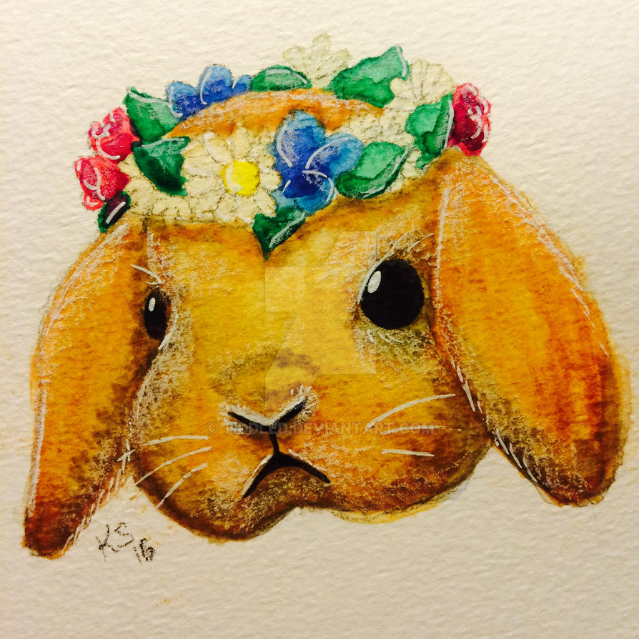 Bunny by tiddled