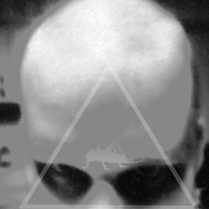 jasonkejn's Profile Picture