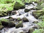 Padley Gorge Derbyshire