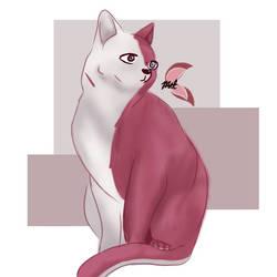 todoroki Kitty