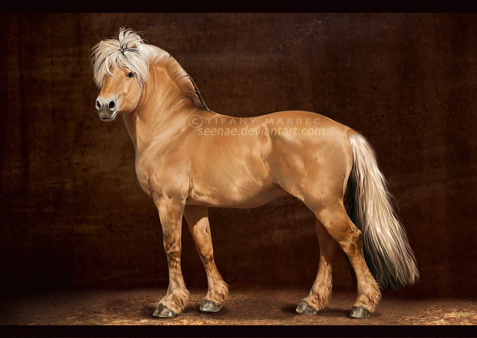 Fjord Horse by Seenae