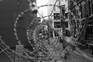 Belfast Razor Wire by irishmormon